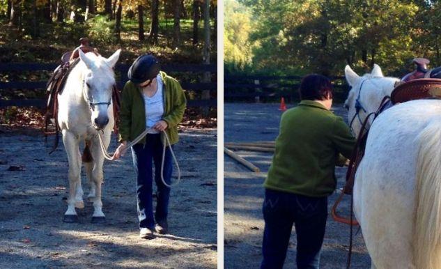 Women whisper to horses at Galleywinter Farm